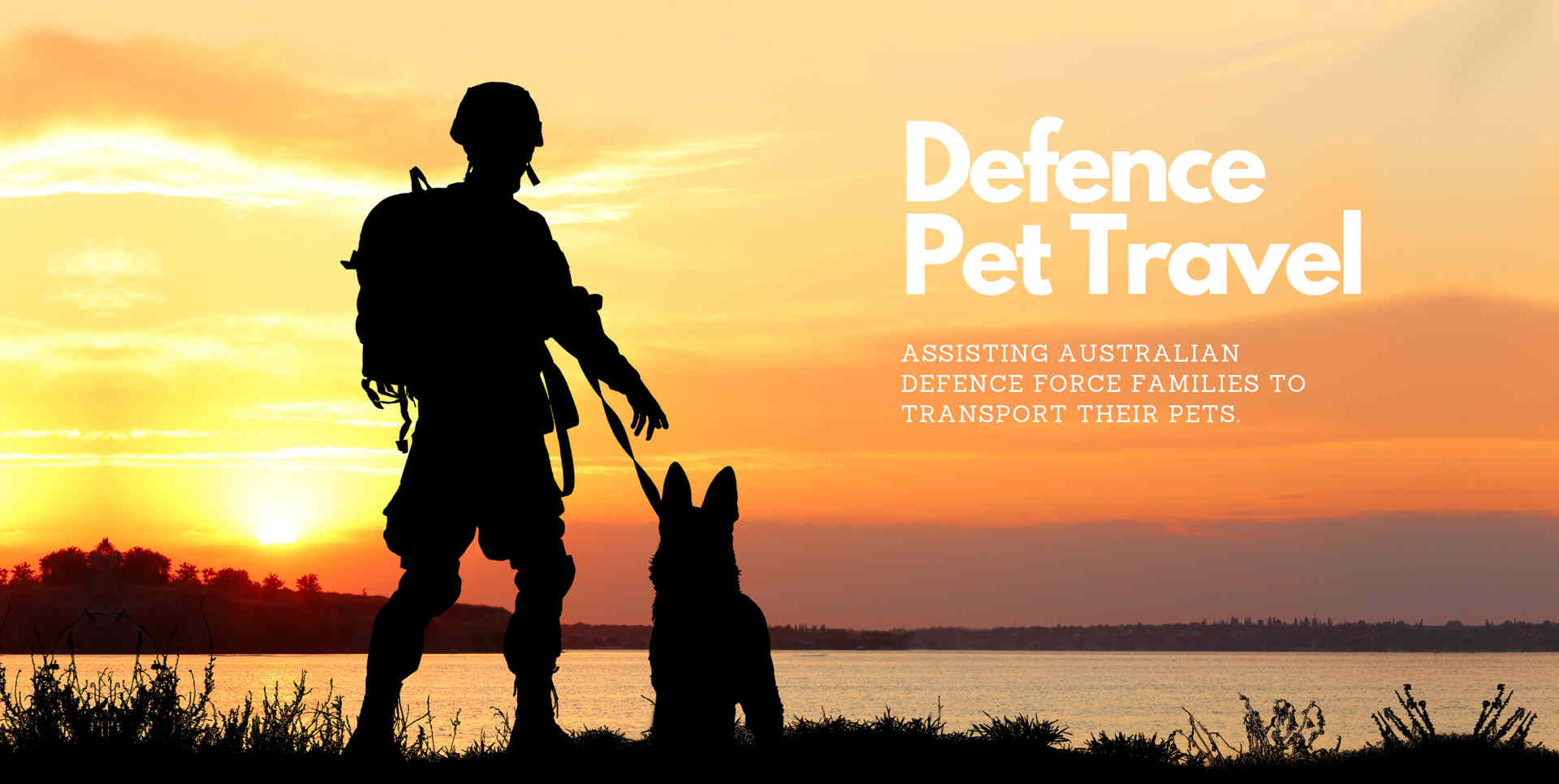 Defence pet travel